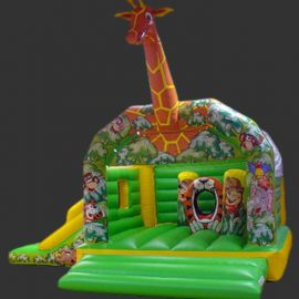 Giraffe Activity Bouncy Castle